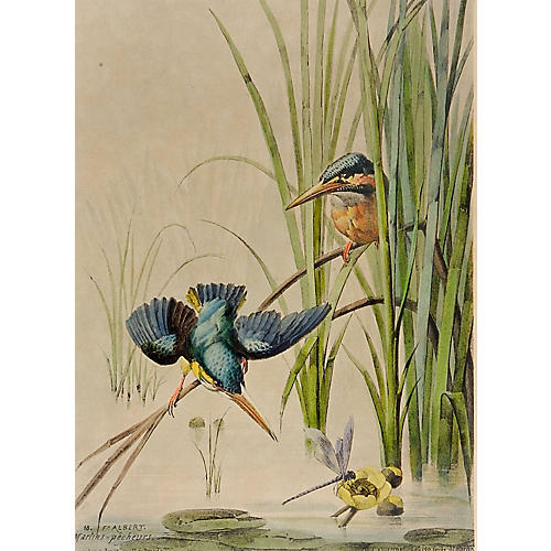 Kingfisher Chromolithograph, C. 1880