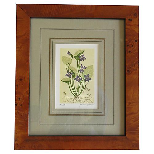 Framed Violet Print