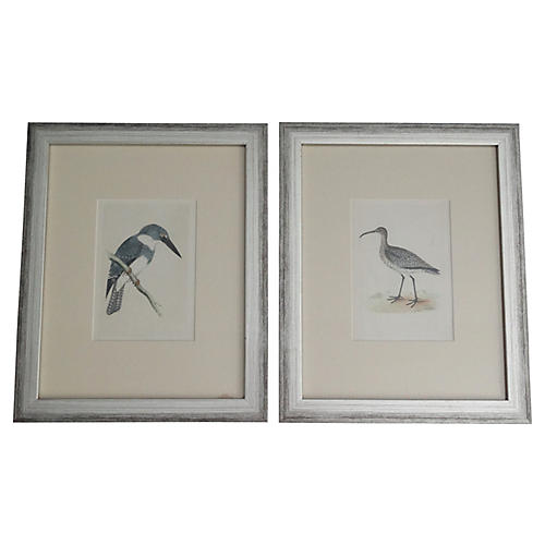 19th-C. Hand-Colored Birds, S/2
