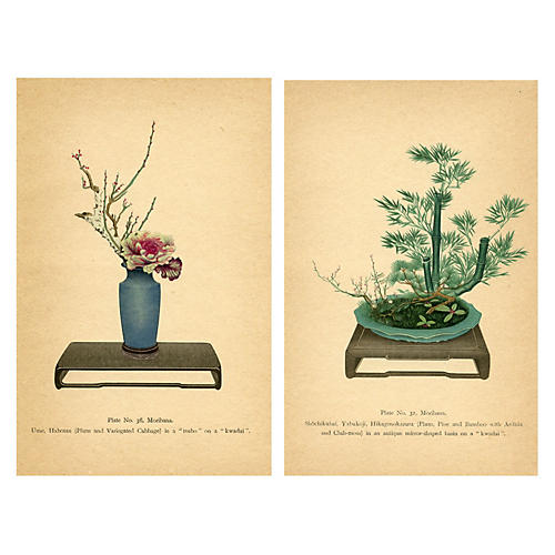 Japanese Flower Arranging Prints, Pair