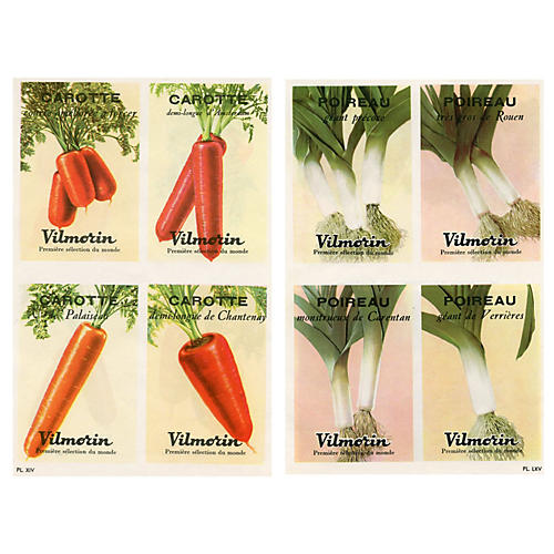 French Vegetable Prints, Pair