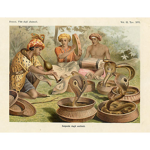 Snake Charmers, 1930
