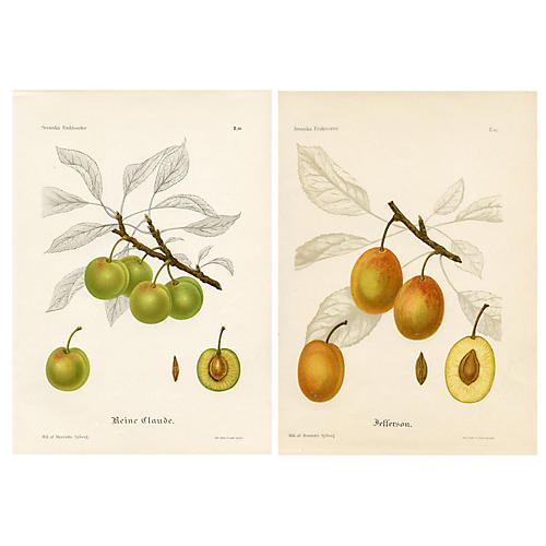 Swedish Plum Prints, Pair