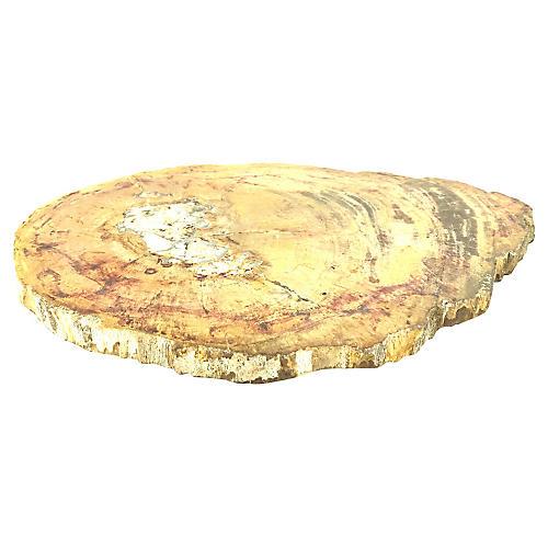 Petrified Wood Slice Tray